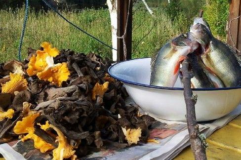Kalastus ja sienestys ovat syksyn kohokohtia