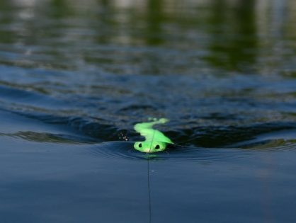 Savage Gear 3D Snake kiemurtelee kalat iskuun