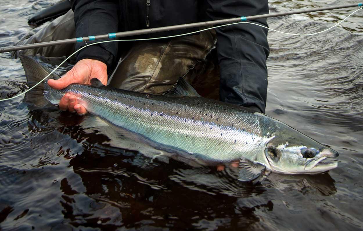 Arktiset Vedet esittelee maailman upeimmat kalastuskohteet