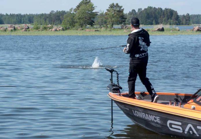 Gatorin Alexander Lexén väsyttelee pirteää kisakalaa Pyhtään vesillä.