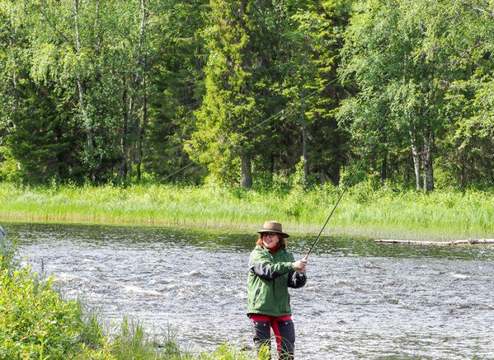 Kun perhoni kapsahti puuhun, muistin heti Veli-Pekka Rusasen sanoneen, että kaikki perhot kalastavat hyvin vain vedestä, eivät puusta tai ilmasta. Kuva Jari Lifländer.