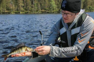 Isojen ahventen Kevättijärvi