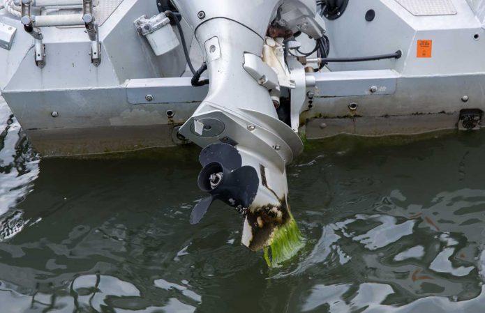 Veneen hyvä hoito osa 3. Levät ja lika pois kesän jäljiltä