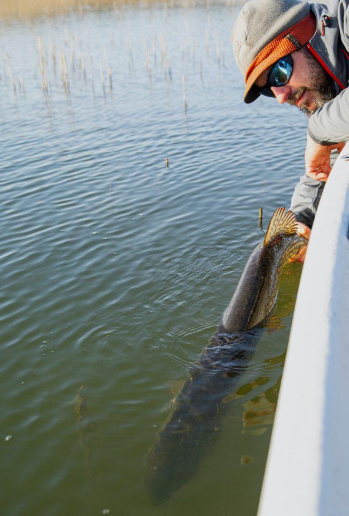 kevään hauenkalastus Saaristomerellä