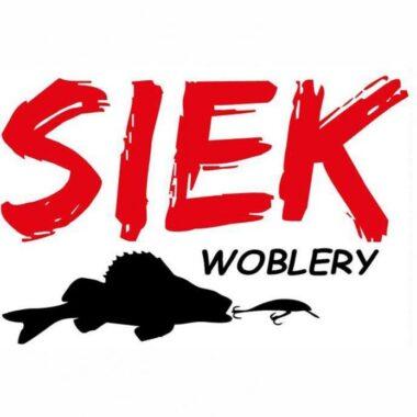 SIEK logo